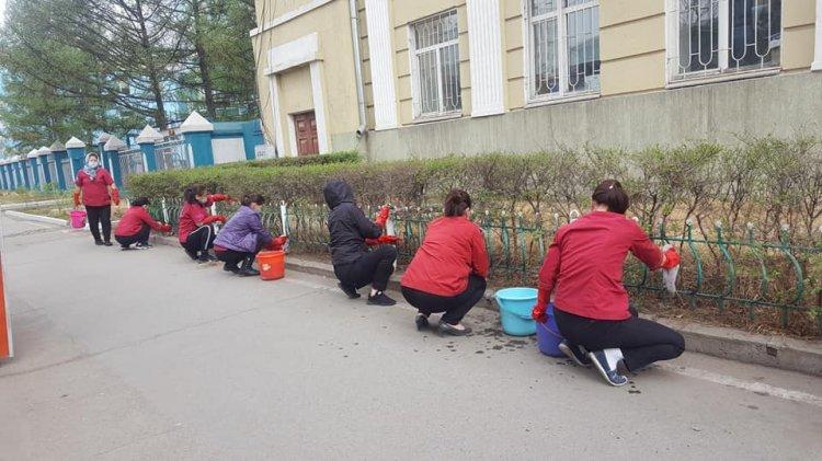"""Засгийн газрын IX байр """"Эрхэс баг"""" гадна талбайдаа цэцэг тарьлаа"""